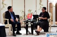 Phó Thủ tướng Phạm Bình Minh gặp Ngoại trưởng Indonesia bên lề Hội nghị Cấp cao ASEAN 34