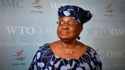 Lý do WTO hủy cuộc họp bầu Tổng Giám đốc kế nhiệm