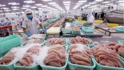 Vì nghề cá có trách nhiệm của Việt Nam