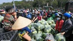 Dịch Covid-19: Hà Nội chung tay 'giải cứu' hàng chục nghìn tấn nông sản vùng dịch