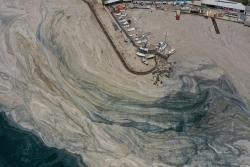 Hình ảnh 'thảm họa' chất nhầy bùng phát tại bờ biển Thổ Nhĩ Kỳ