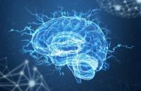 Giống như ma thuật huyền bí thời cổ đại, robot siêu nhỏ có thể được cấy vào não người