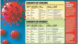 Covid-19: Tại sao WHO thay đổi cách gọi tên biến thể của virus SARS-CoV-2?