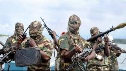 Cảnh báo: Xung đột kéo dài ở Đông Bắc Nigeria sẽ khiến hơn 1 triệu trẻ dưới 5 tuổi tử vong
