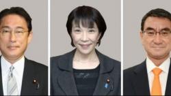 Nhật Bản: Trước thềm chiến dịch tranh cử Chủ tịch LDP, các phái trong đảng tỏ rõ lập trường