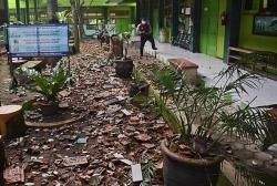 Indonesia và Philippines lại 'hứng' động đất