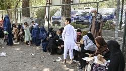 'Gật đầu' với Kabul, Thụy Sỹ dừng trục xuất người tị nạn Afghanistan