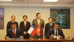 Thúc đẩy hợp tác kinh tế-thương mại Việt Nam và Chile