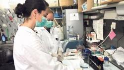 Công ty Israel phát triển công nghệ in 3D mô và nội tạng người