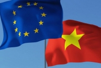 Thông cáo báo chí chung về Đối thoại Việt Nam - Liên minh châu Âu về quyền con người 2020