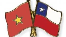 Điện mừng nhân dịp kỷ niệm 50 năm ngày thiết lập quan hệ ngoại giao Việt Nam-Chile