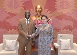 Chủ tịch Quốc hội tiếp Giám đốc quốc gia Ngân hàng Thế giới tại Việt Nam