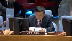 Việt Nam kêu gọi cộng đồng quốc tế tiếp tục ủng hộ tiến trình chính trị tại Haiti