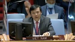 Hội đồng Bảo an họp về tình hình Trung Đông, bao gồm vấn đề Palestine