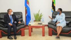 Đại sứ Nguyễn Nam Tiến chào xã giao Bộ trưởng Ngoại giao Tanzania