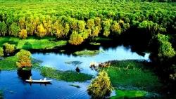 Rừng tràm Trà Sư: Từ vùng trũng hoang hóa đến điểm du lịch lý tưởng