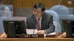 Việt Nam hoan nghênh các hoạt động đối thoại, tiếp xúc giữa Israel và Palestine