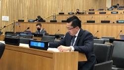 Việt Nam tham gia phiên họp của Ủy ban Chính trị đặc biệt và Phi thực dân hóa của Đại hội đồng Liên hợp quốc khóa 76