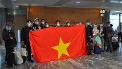 Đưa gần 340 công dân Việt Nam từ Na Uy, Mozambique, Nam Phi, Qatar về nước