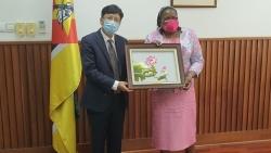 Mozambique mong muốn thắt chặt quan hệ hữu nghị hợp tác truyền thống với Việt Nam