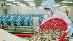 Xuất khẩu ngày 18-22/10: Mỹ tiếp tục là thị trường xuất khẩu lớn nhất, xuất khẩu gạo 'rộng đường', doanh nghiệp thủy sản nỗ lực phục hồi