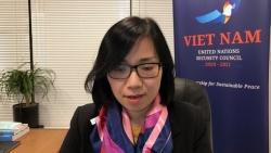Việt Nam đánh giá cao sự hợp tác tích cực, hiệu quả của Chính phủ Iraq với UNITAD