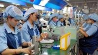 Việt Nam đón gần 21,3 tỷ USD vốn FDI từ khối CPTPP