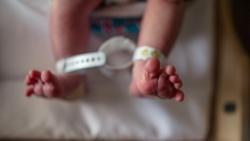 Đại dịch Covid-19 khiến tỷ lệ sinh ở Mỹ thấp kỷ lục