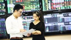 Chứng khoán tiếp tục là kênh đầu tư hấp dẫn, nhà đầu tư nội đua nhau mở tài khoản mới