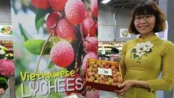 Vải tươi Việt Nam tại Australia được đấu giá lên tới 53 triệu đồng/kg
