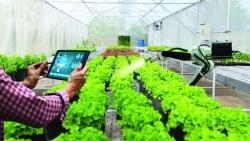 Chìa khóa thúc đẩy phát triển hệ sinh thái nông nghiệp số tại Việt Nam