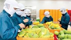 'Cửa sáng' cho xuất khẩu rau quả Việt tại thị trường Anh