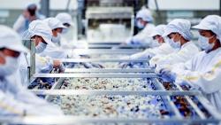 Để tăng xuất khẩu vào ASEAN, hàng hóa phải cập nhật quy tắc và thủ tục xuất xứ