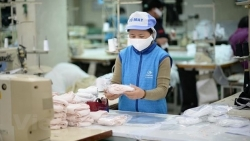 Gam màu xám của kinh tế Việt Nam cuối năm 2021