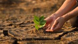 ADB nâng tham vọng tài trợ khí hậu giai đoạn 2019-2030 lên 100 tỉ USD