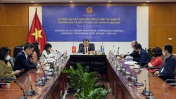 Việt Nam-Uruguay thúc đẩy hợp tác kinh tế, thương mại