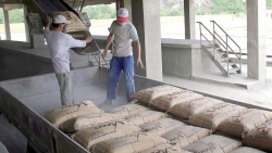 Xuất khẩu ngày 23-25/10: Nhóm hàng xuất khẩu trên 1 tỷ USD 'vững vàng'; hàng Việt Nam gặp 'khó' vì điều tra, phòng vệ thương mại gia tăng