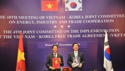 Việt Nam-Hàn Quốc hướng tới kim ngạch thương mại song phương 100 tỷ USD