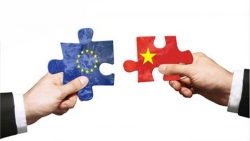 Hiệp định EVFTA: Xóa bỏ nghi ngờ về năng lực cung cấp của Việt Nam, hưởng 'trái ngọt' quan hệ thương mại Việt Nam-EU