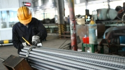 Xuất khẩu 24-26/4: Nhà thầu xây dựng 'khóc thét' vì giá thép, Nga tăng nhập khẩu trái cây Việt Nam