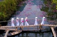 Khoảnh khắc đẹp nhất mùa Xuân năm 2020 gọi tên nhiếp ảnh gia Việt Nam