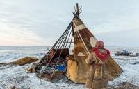 Khám phá cuộc sống đời thường của bộ lạc Nenets tại nơi 'tận cùng thế giới'