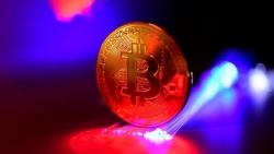 Tiền điện tử hôm nay 4/9: Bitcoin 'sập sàn', 9/10 tiền ảo hàng đầu lao dốc
