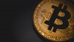 Tiếp lộ trình tăng 'thần tốc', Bitcoin lần đầu vượt 30.000 USD