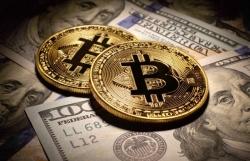 Tiền điện tử hôm nay 15/9: Bitcoin bật tăng, tiền ảo khởi sắc, Pokadot là ngôi sao sáng nhất