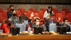 Hội đồng Bảo an thông qua 2 nghị quyết về Afghanistan và Iraq, thảo  luận tình hình tại Somalia
