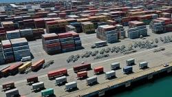 Nhà nhập khẩu hàng đầu của Mỹ xuất chinh tàu riêng để vận chuyển hàng