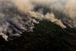 Nông nghiệp Brazil gặp khó do hạn hán nặng nề nhất trong 91 năm