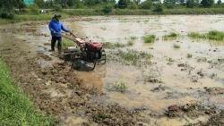Do đâu, xuất khẩu gạo của Thái Lan dự báo tăng