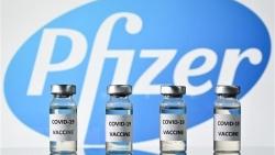 Mỹ dự kiến phê duyệt đầy đủ cho vaccine Covid-19 của Pfizer/BioNtech vào tháng 9